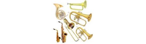 Dychové nástroje